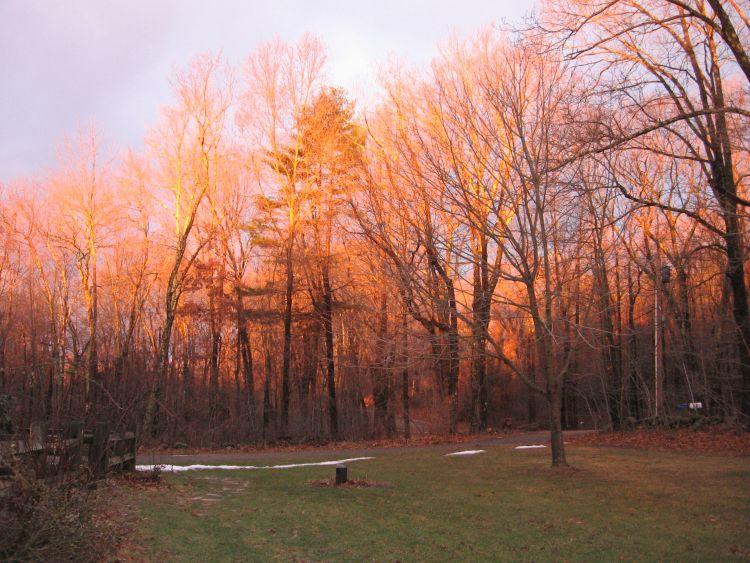 Front yard at Sunrise