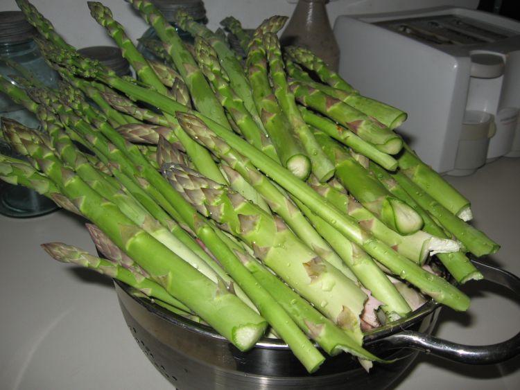 Fresh Asparagus, May 2015