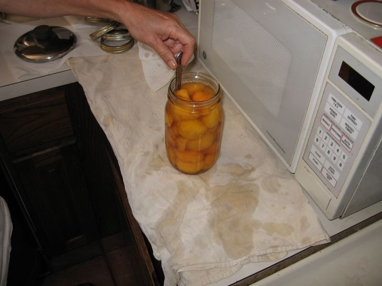 Canning Peaches 6