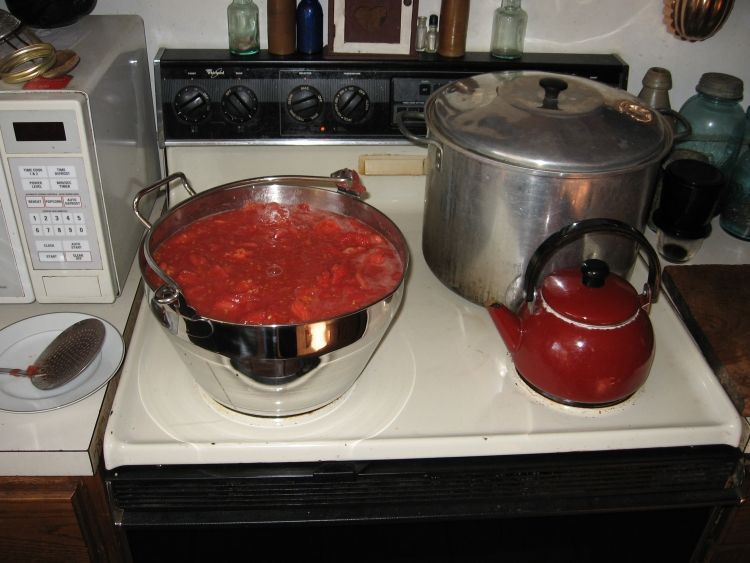 Canning Tomatoes 3