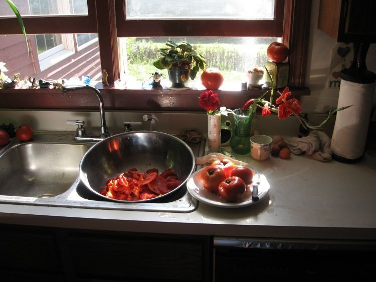 Canning Tomatoes 1