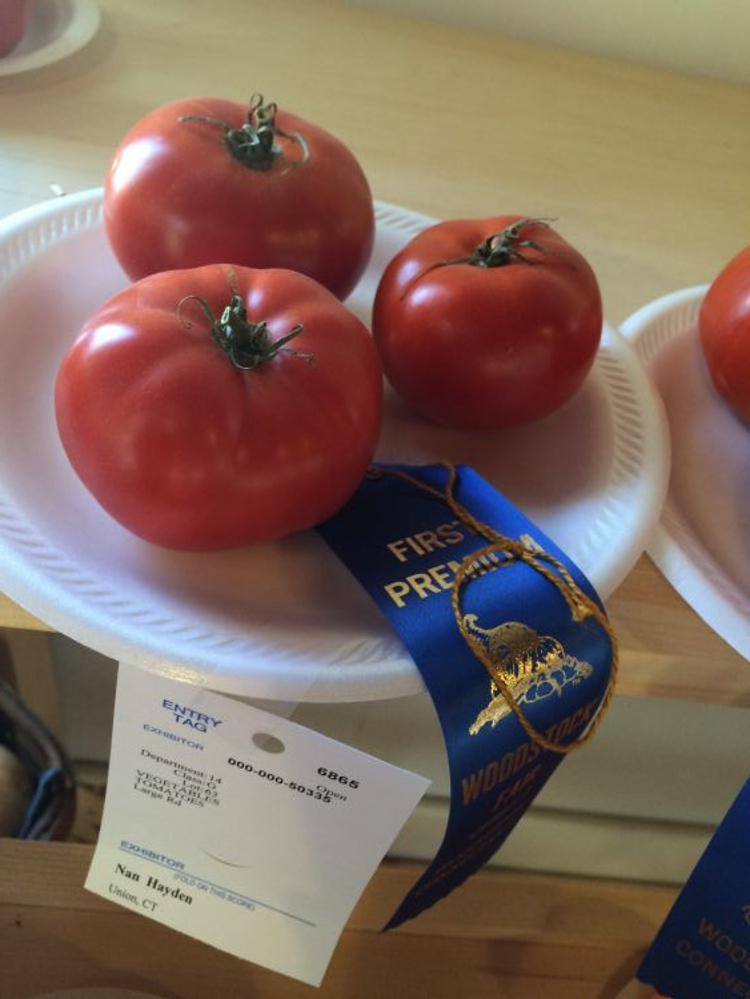 Woodstock Fair 2015 Tomato