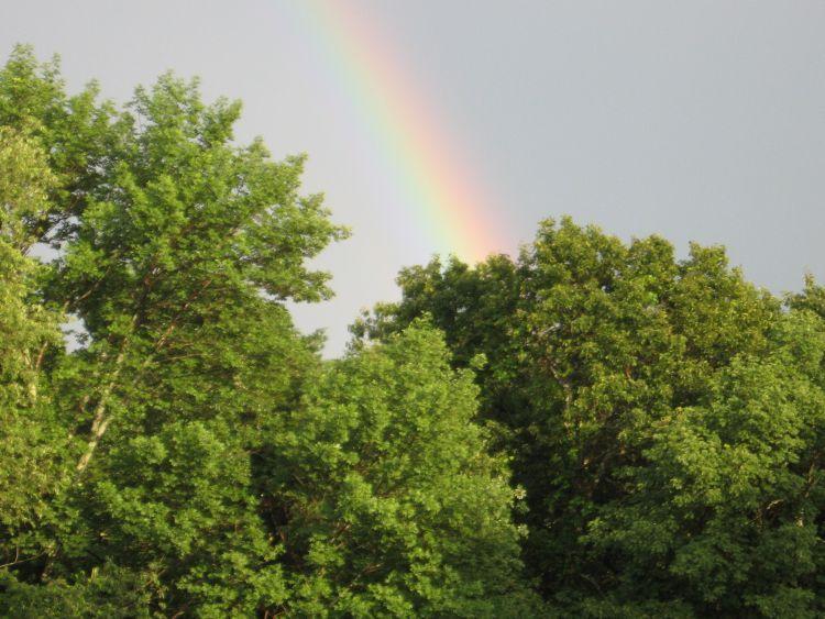 Rainbow, sign of God's promise!