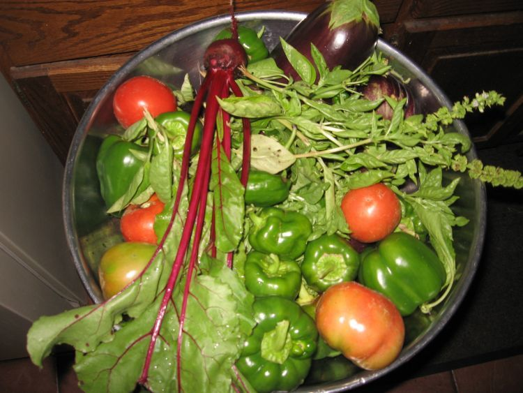 Fall harvests good for pickling!