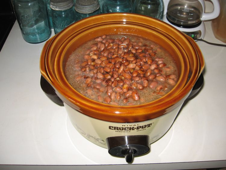 Beans ready to 'Bake'