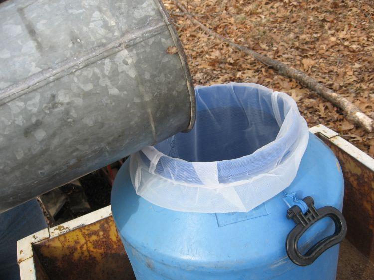 Collecting and filtering sap