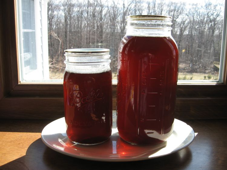 Late 2012 batch Maple Syrup