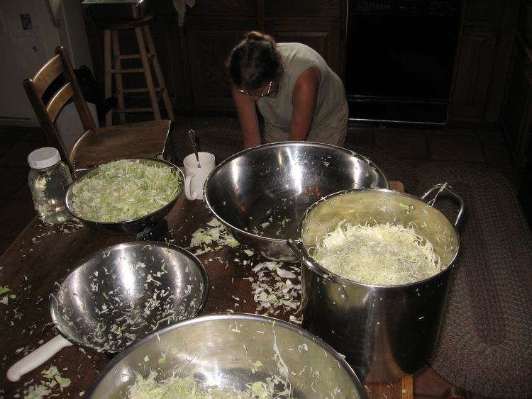Salting the Cabbage