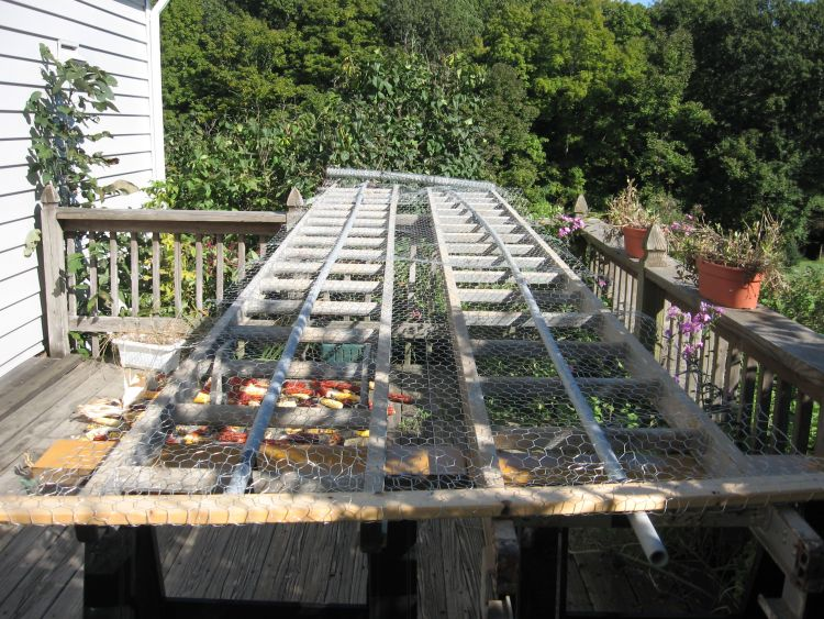 First Corn drying rack 2012