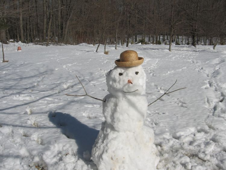 Snowman to welcome you!