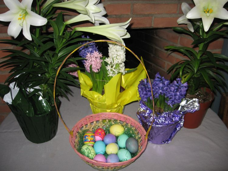 Easter flowers, signs of Spring!