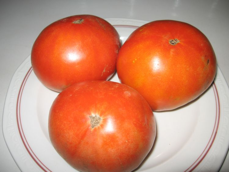 First Beefsteak Tomatoes 2013