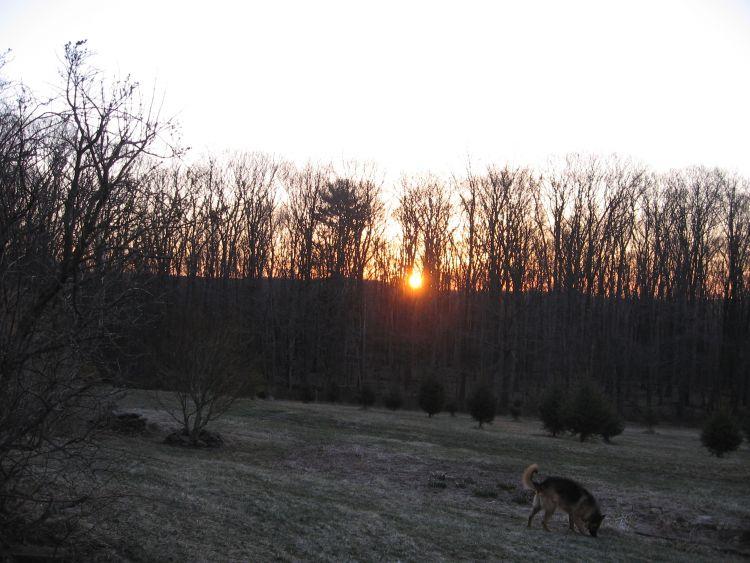Sunrise at my farm April 2014