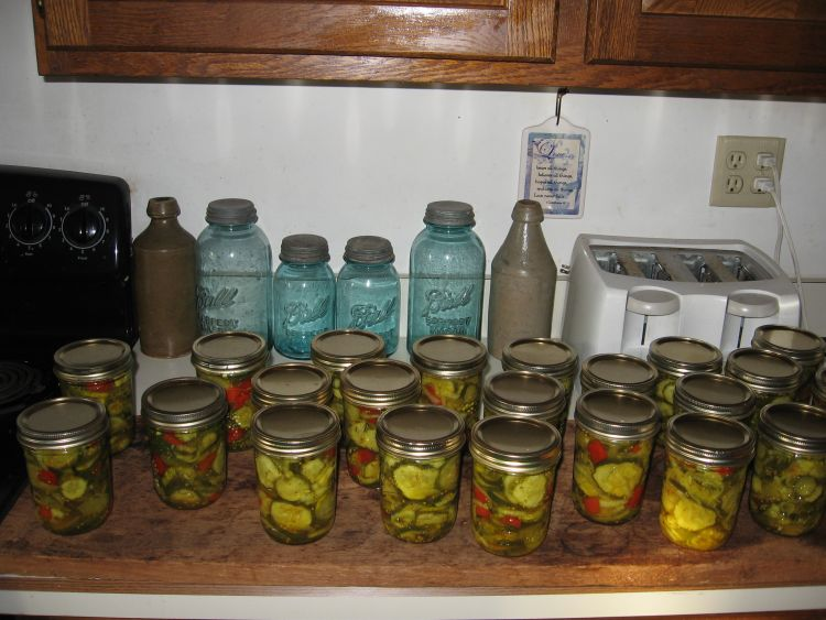 Bread and Butter Pickles 2014