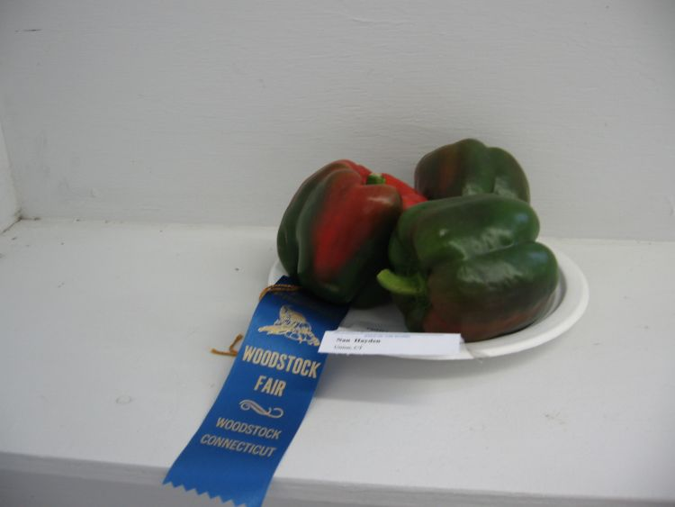 Prize Winning Peppers!
