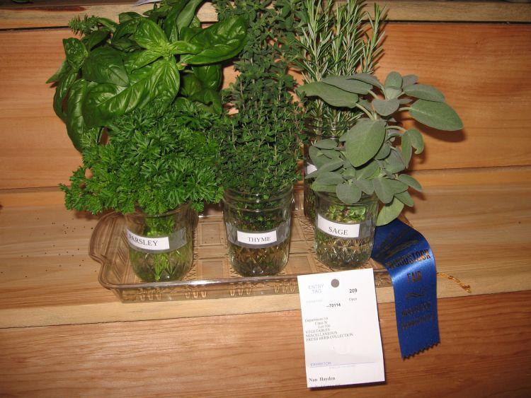 Prize winning herbs