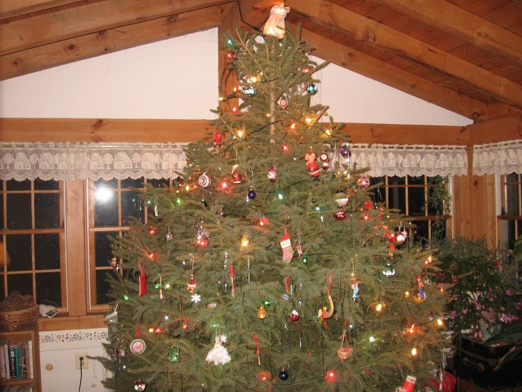 Top Christmas tree
