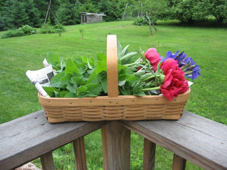 Harvest Basket of Mint & flowers