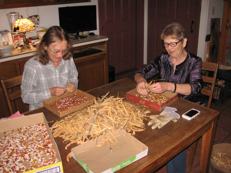 Bean Shelling Party with friends Betty and Bill!