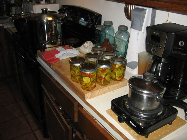 Pickle making and Canning 1