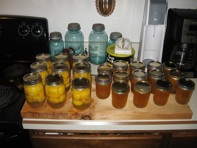 Today's Peach Canning