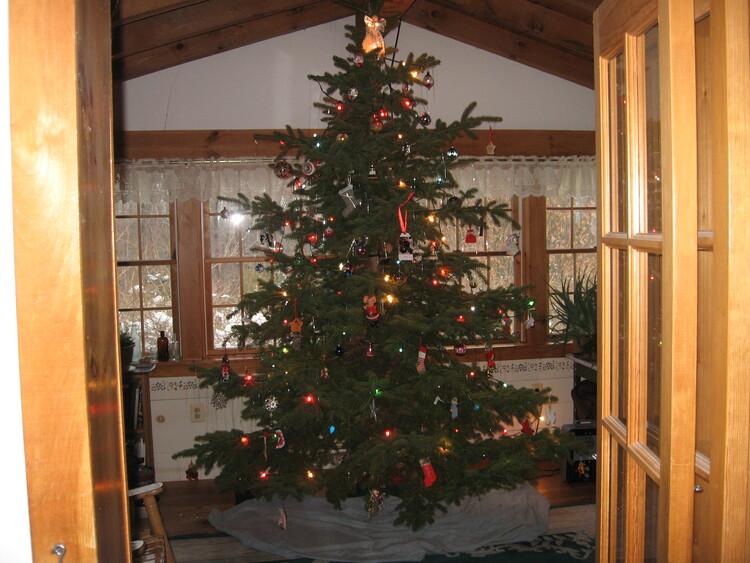 Christmas Tree Room 2020