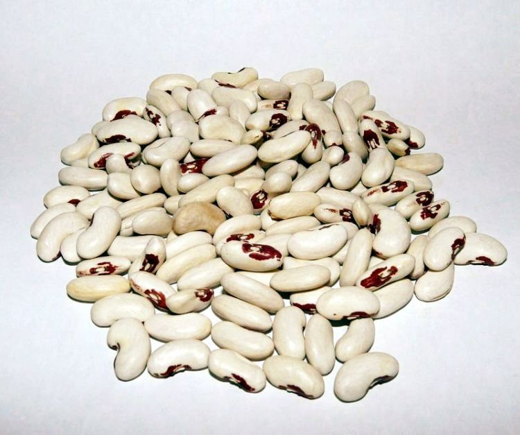 Soldier Beans