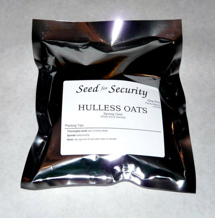 Hulless Oats